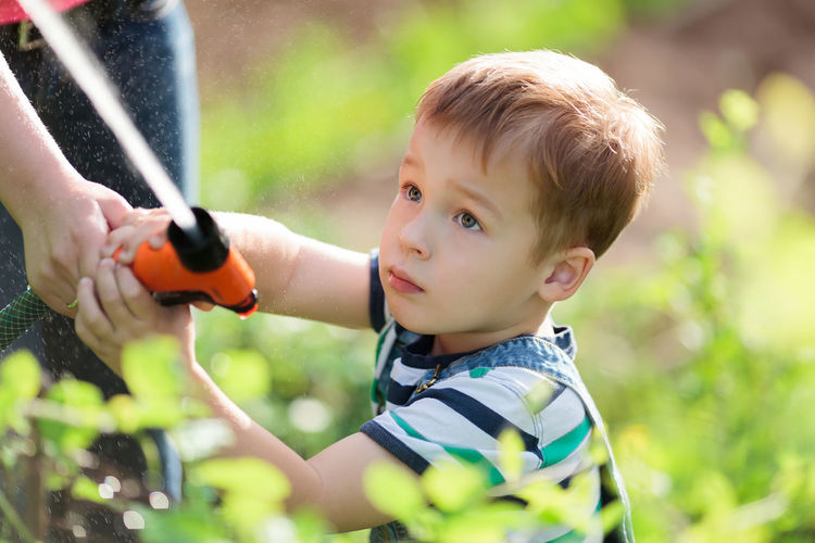 Boy Boys Caucasian Child Childhood Garden Grass Happiness Hose Jet Kid Pour Splash Spray Sprayer Stream Summer Water