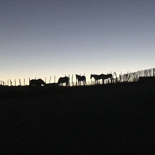 Not edited, original photo. Sedona, AZ
