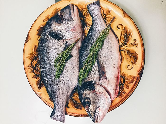 Directly above shot of fishes and herb in plate on white background