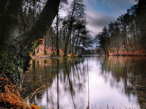 Water Nature Beauty In Nature Walking OlympusPEN Czech Republic Liberec Landscape_photography Ndfilter