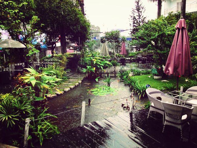 Raining :)