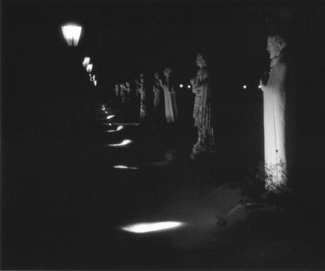 Dark night ! All In A Row Dark Night Illuminated Light Reflections Night Outdoor Lamps Outdoors Spooky Photo