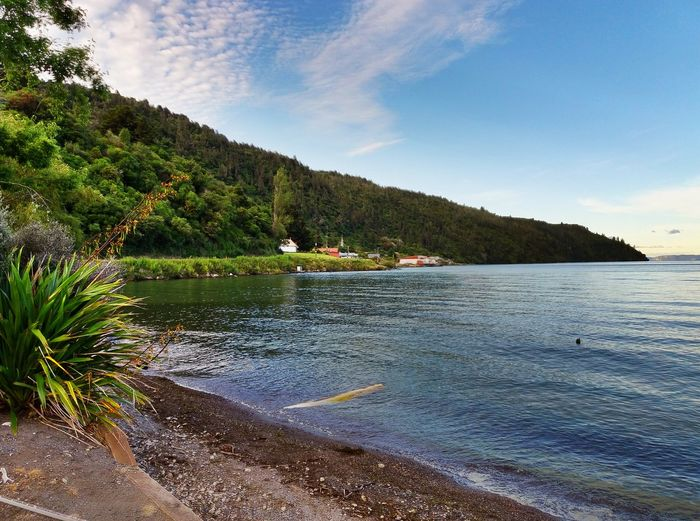 Beautiful place to work new year's Eve. Lake View New Zealand Scenery