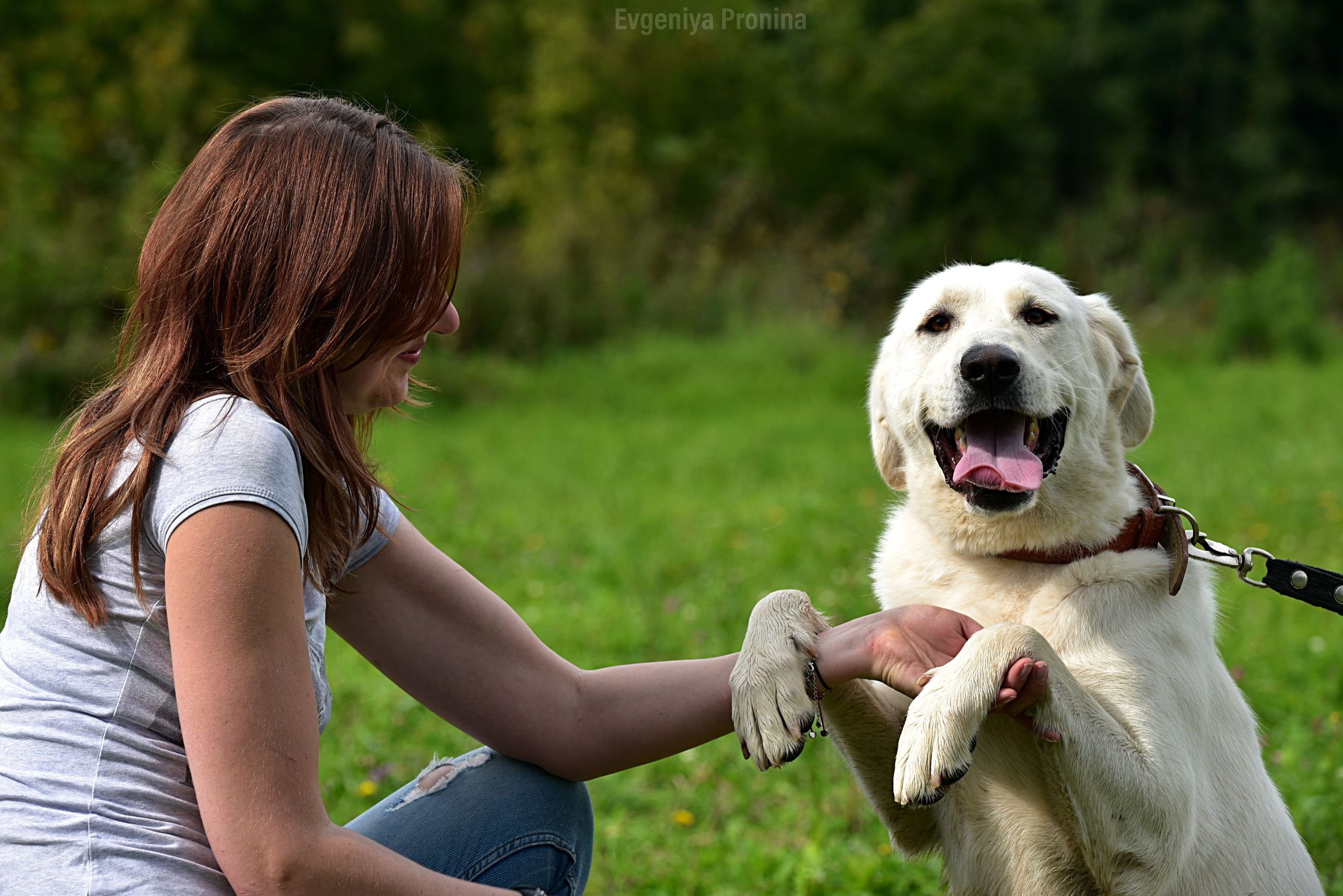 mammal, pets, domestic, domestic animals, one animal, canine, dog, vertebrate, real people, women, one person, three quarter length, sitting, day, casual clothing, focus on foreground, leisure activity, hair, hairstyle, outdoors, pet owner