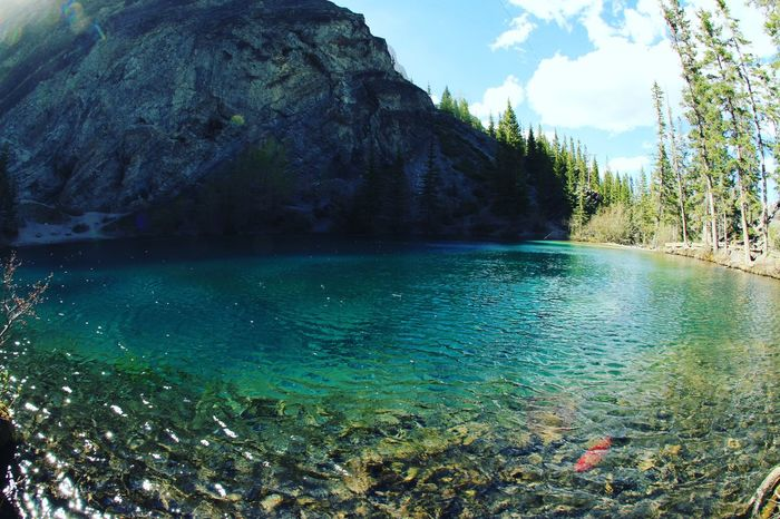 Paradise Water Reflection Cloud - Sky Outdoors No People Beauty In Nature Nature Grassi Lakes Alberta Canada Hike Scenery Outdoor Photography Travel Destinations Canmore Alberta Canada Wilderness Natgeotravel Canada Canonphotography Snapshot Day The Great Outdoors - 2017 EyeEm Awards