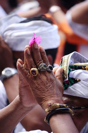 Prayers Religion And Tradition Bali, Indonesia Bali Rings Jewelry Balinese Life Balinese Culture Balinese Traditional Hand Old Hands Religious  Flower Flower Hand Connected By Travel Focus On The Story This Is My Skin