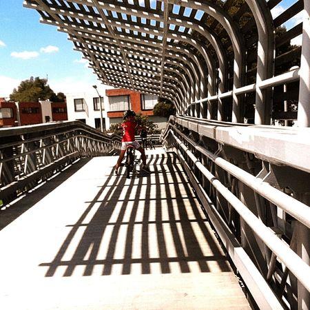 The City Light Bridge - Man Made Structure Exercising Sport