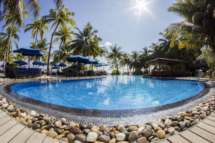 Beauty In Nature Fisheye Love Luxury Maldives No People Outdoors Palm Tree Palms Paradise Pool Sky Stones & Water Sunbeam Sunlight Swimming Pool Vacations Water