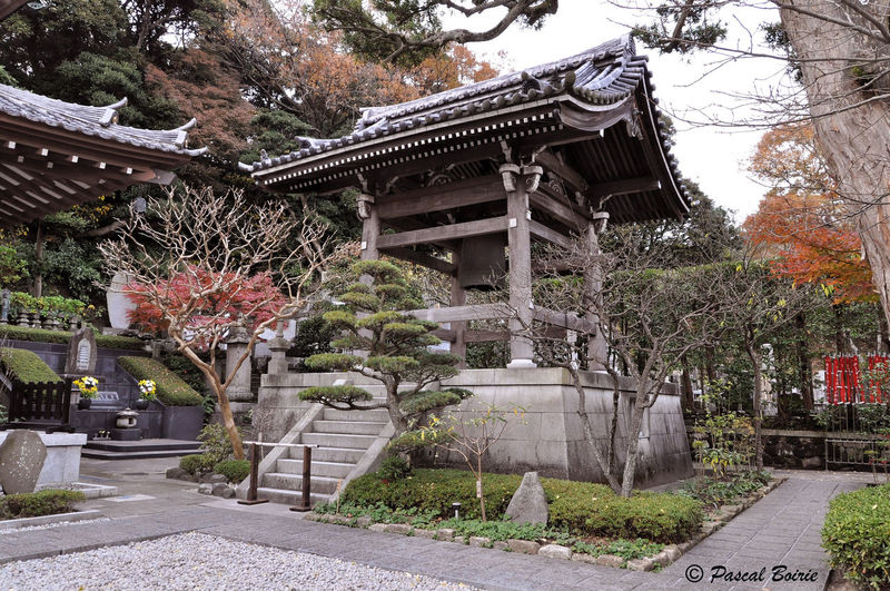 Architecture Building Exterior Built Structure Day Hase-temple Hasedera Japan Nature No People Outdoors