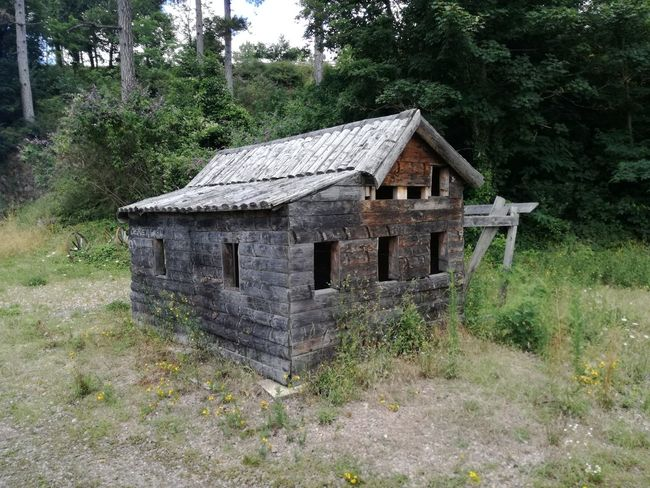 No People Built Structure Abandoned Nature Outdoors Day Cabanes Bois Wood Building Exterior