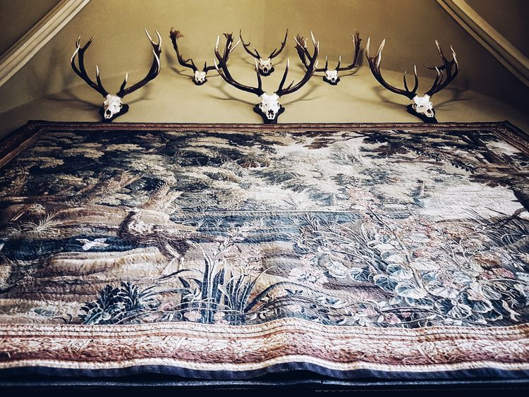 Trophies... Indoors  Ornate Selective Focus Decoration Creativity Ornament No People Intricacy Surface Level History Schloss Werningerode Harz Wernigerode Trophies Antler Antlers On Wall Tapestry Interior Design Interior My Favorite Place Castle Old-fashioned