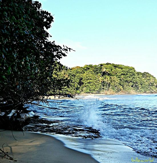 wizard beach panama Traveling Natural Beauty What I Did Today Beach Photography Tropical Beach Sea And Sky Solitude