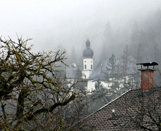 Bare Tree Beauty In Nature Built Structure Church Day Foggy No People Season  Tree