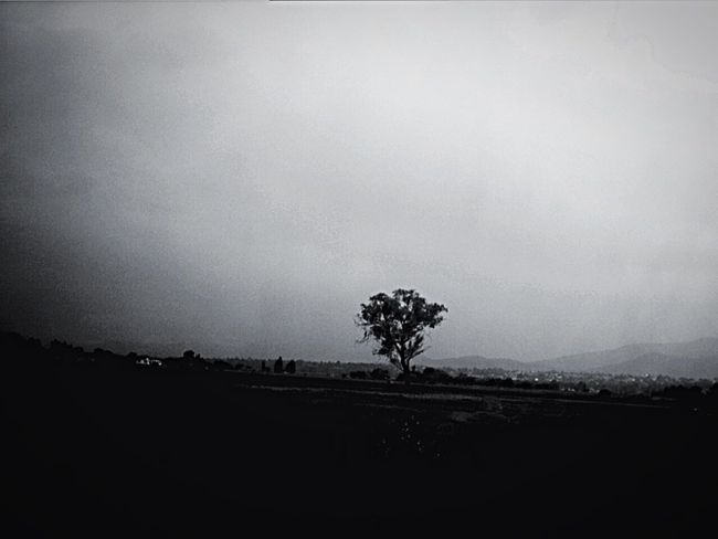 Juegos de la memoria ... IPSLight Landscape_Collection NEM Landscapes NEM Memories NEM Silence NEM BadKarma EyeEm Best Shots - Black + White NEM Black&white IPSBW