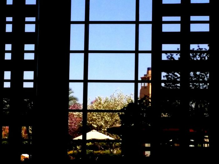 View From Inside The Places I've Been Today AUC Blue Sky Darkness And Light