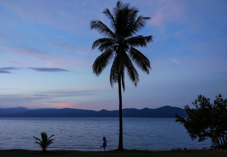 The silhouette of my beautiful daughter under the coconut tree on the side of the lake.
