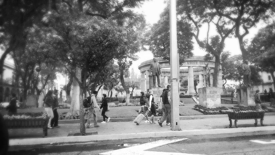 I miss you GDL! Gdl Guadalajara