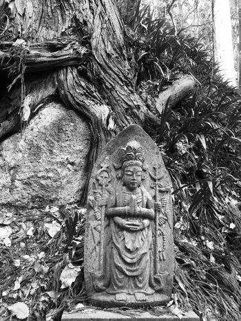 Yamadera 山寺 お寺 Temple 日本 山形 石仏