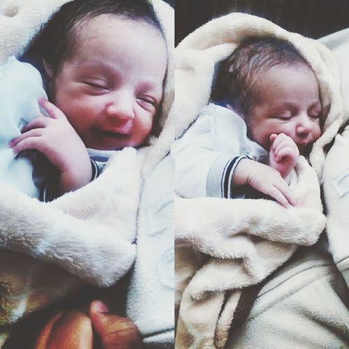 Lorenzo ??? Lorenzo Baby Likeforlike Love