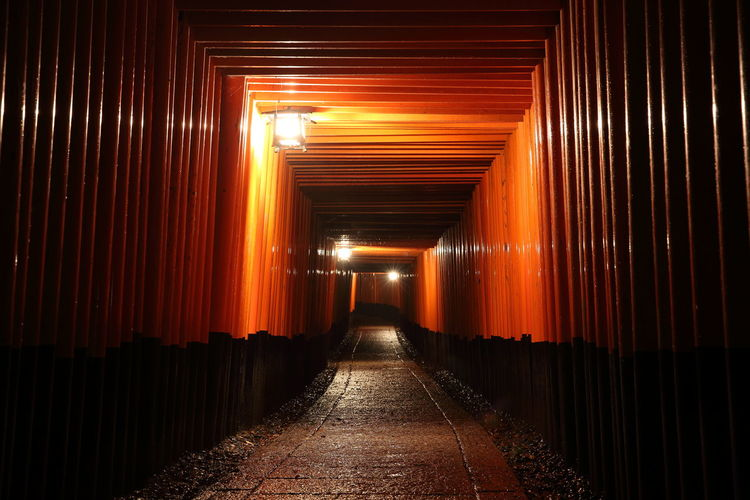 Fushimi Inari Shrine Tori Gate Kyoto Japan Direction The Way Forward Diminishing Perspective Architecture Illuminated Indoors  No People Orange Color Built Structure Footpath Lighting Equipment Building Place Of Worship Empty In A Row Religion Spirituality vanishing point Tunnel Ceiling Long Shrine Light At The End Of The Tunnel