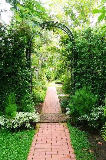 Secret Garden Garden Path Garden Follow The Path Green Space Bangkok