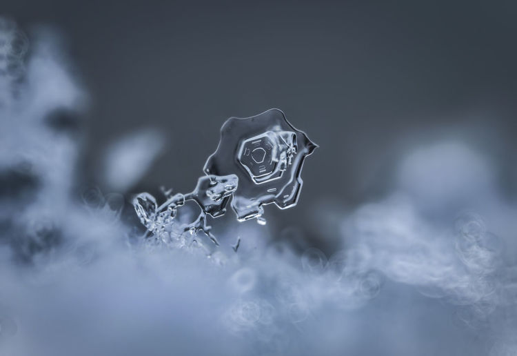 Close-up of ice during winter