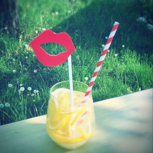Straw Lemonade Summer ☀ Summertime Drink In The Nature Etyek Sonkamester