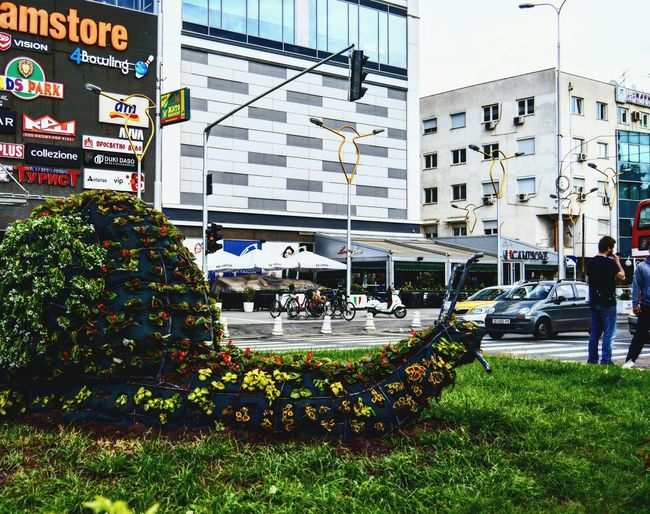 Up Close Street Photography Nikonphotography Snail🐌 Snail Capitolmall Macedonia