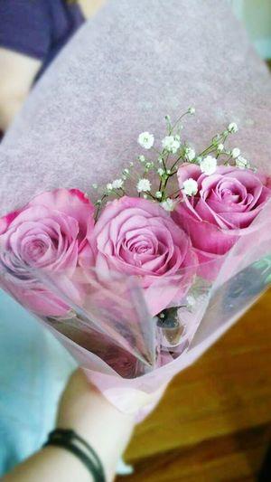Pink Roses Babys Breath Bouquet Birthday