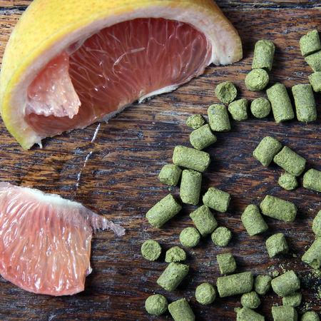 Braft beer ingredients and flavors Beer Beer Flavors Beer Ingredients Brewing Citric Fruit Craft Beer Freshness Fruit No People Women