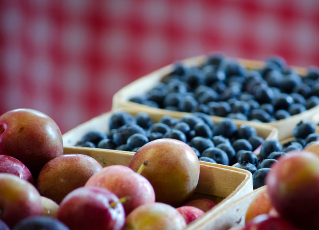 fresh necatrines and blueberries are for sale at a farm market in Michigan Agriculture Nectarines Blueberries Close-up Country Market Day Food Food And Drink Fresh Fruit Freshness Fruit Healthy Eating Indoors  No People Red Checkered Backdrop Selective Focus Still Life