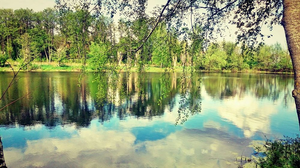 Taking Photos Relaxing Natural Beauty Nature Check This Out Russia Sky And Clouds Hello World Green Lakeside