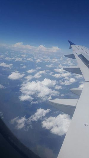 Showcase July Above The Clouds Window Seat Come Fly With Me Taking Photos Enjoying The Ride Best Seat In The House Check This Out Hello World Nothing But Blue Skys Taking Photos flying high Amazing View On The Way
