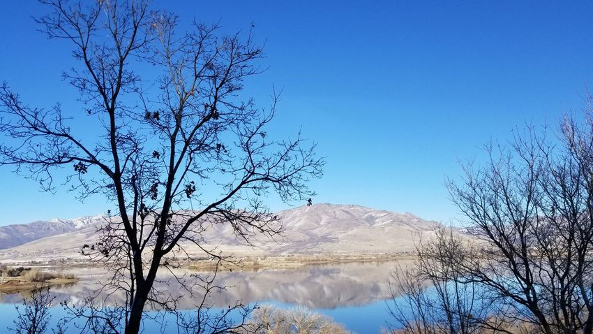 Landscape_photography Pineview Dam Wintertime Cold Temperature Cold Weather Blue Wave Tree Nature Blue Mountain Beauty In Nature Branch Silhouette Landscape Outdoors Sky Day Winter