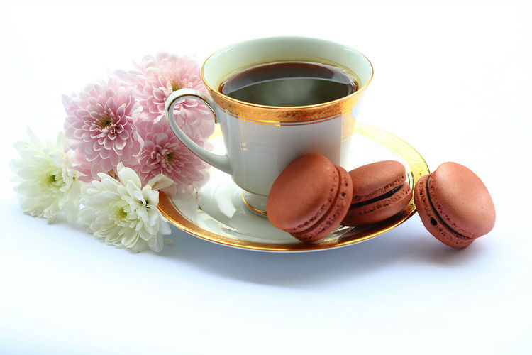 A cup of black coffee and three brown macarons on a plate with beautiful Chrysanthemum flowers isolated on white background. Black Brown Chrysanthemum Classic Close-up Coffee Coffee Cup Coffee Time Drink EyeEm Flower Flowers Food And Drink Fragility Freshness Macarons Meal Nature No People Outdoors Pink Color Still Life Studio Shot Sweet White Background