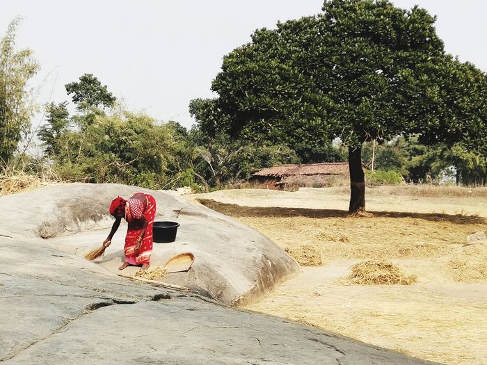 Rear view of woman sitting on road amidst trees