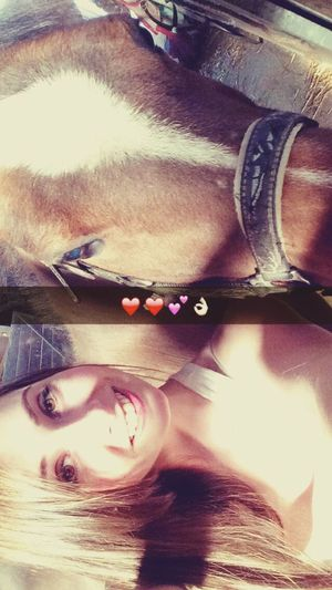 Horseriding InstaPause