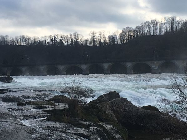 Rheinfall Natur Steine Wasser Wasserfall Brücke Bridge - Man Made Structure Winter Connection Cold Temperature Snow Water River