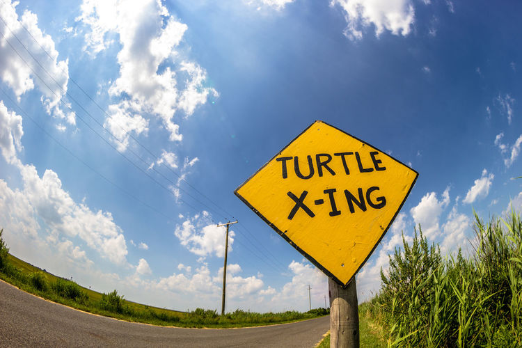 Turtle Turtle. Close-up Directional Sign Fisheye Iam Iamneat Nature No People Sky Text Tucker Tuckerton Turtles Western Script Yellow