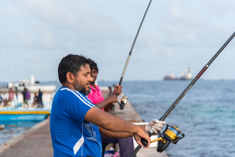 Fish Fishing Man Fishing Tackle Fresh Fish Fresh Fish Market Fresh Tuna Island Maldives Maldives Island Male Maldives Raw Food Sea Seafood Standing Tuna Fish Water