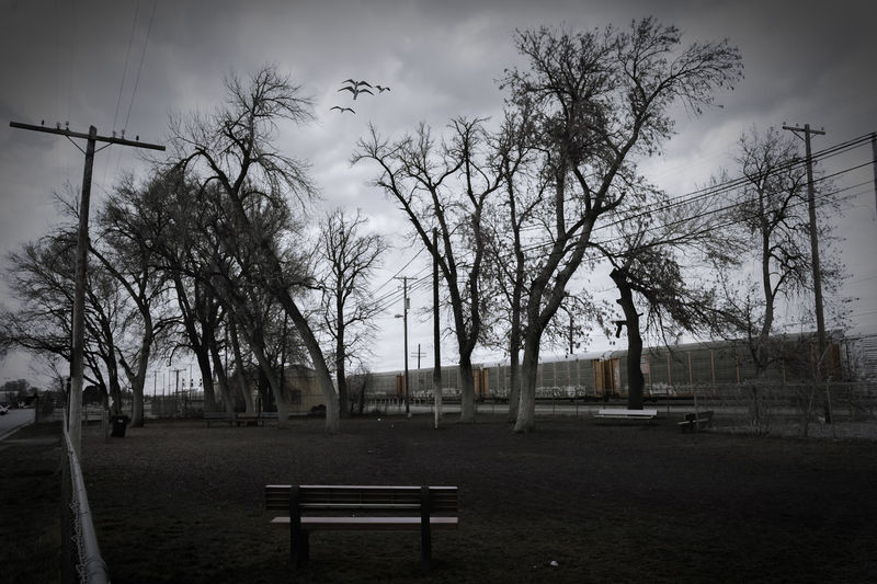Empty park bench on field against sky
