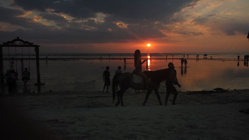 Heaven Peoples Sea Beach Sunset Horse Adult People Horizon Over Water Water Domestic Animals Sand Night Sky Outdoors One Person Mammal Adults Only Women Men Full Length Only Women