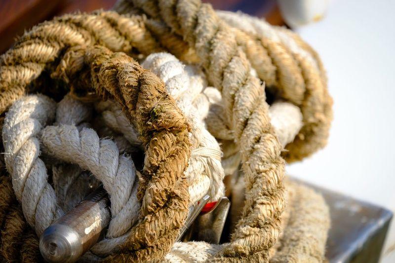Close-up of rope rolled bollard at harbor