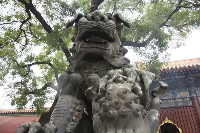 Animal Representation Art Art And Craft Asian Culture Beijing Carving - Craft Product China Creativity Culture Cultures Forbidden City Forbidden Places Religion Respect Sculpture Statue