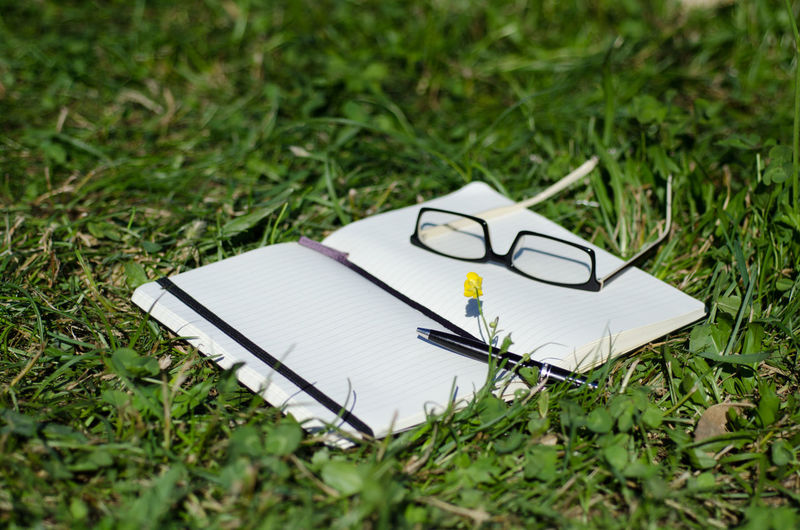 Notebook with Eyeglasses and a Pen on the Grass. Sunny Book Close-up Communication Day Education Eyeglasses  Focus On Foreground Grass Green Color High Angle View Nature No People Notebook Outdoors Paper Pen Pencil Publication Still Life
