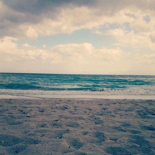 Best Christmas. Beach Florida Relaxing