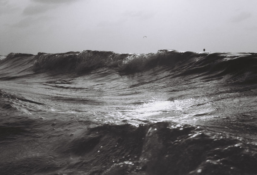 a day at the beach Film Photography Filmisnotdead Blackandwhite Black And White Blackandwhite Photography Sky Motion Beauty In Nature Sea Wave No People Nature Sport Waterfront Scenics - Nature Day Water Aquatic Sport Power Power In Nature Land Rock Outdoors Breaking Flowing Water