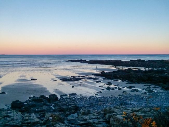 Sunset on the Marginal Way Maine Marginal Way Ogunquit Seascape EyeEm New Here Rocky Shore IPhoneography Water Sky Sea Scenics - Nature Beach Beauty In Nature Tranquility Tranquil Scene Horizon Over Water Horizon Sunset Clear Sky Rock Outdoors