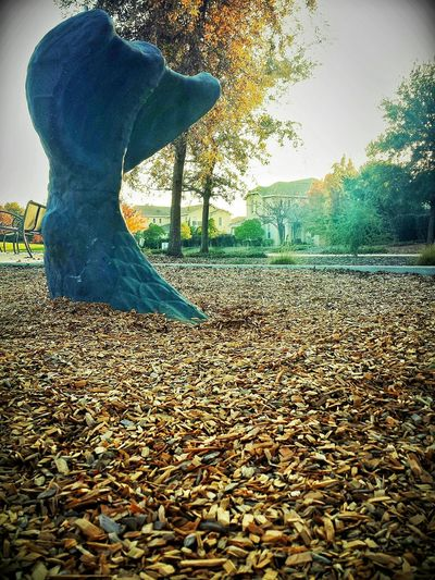 Showcase: November Park Outside Afternoon Hanging Out Fish Tail Phone Photography