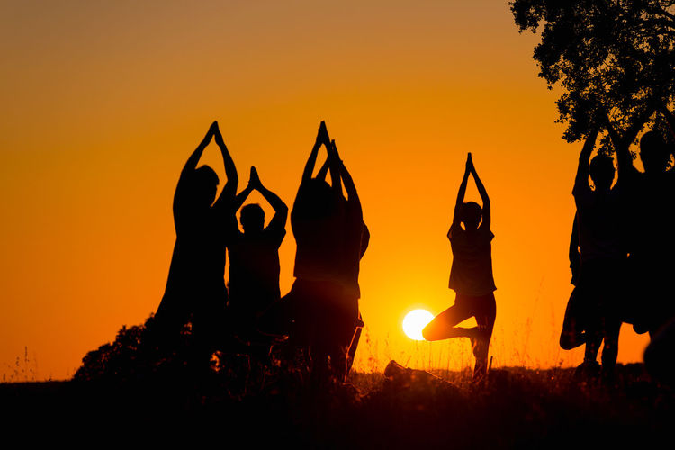 Silhouette of several people practicing yoga in the field Adult Beautiful Body & Fitness Calm Exercise Field Meditating Meditation Silhouette Yoga Yoga Pose Active Activity Background Campinho Darksky Female Fitness Girl Group Health Lifestyles Male Pose Sunrise